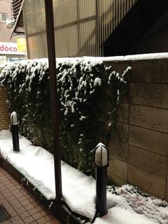 イシイの小話(また雪...)